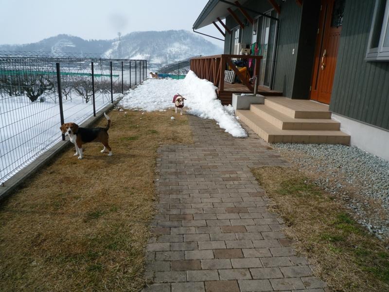 雪溶かし!!