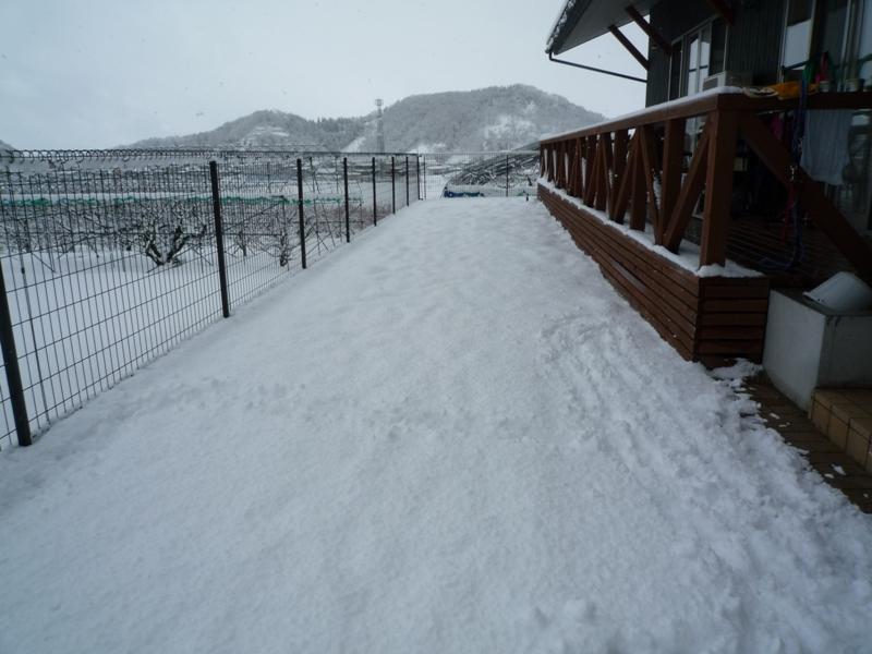 雪、片付けないと・・・!