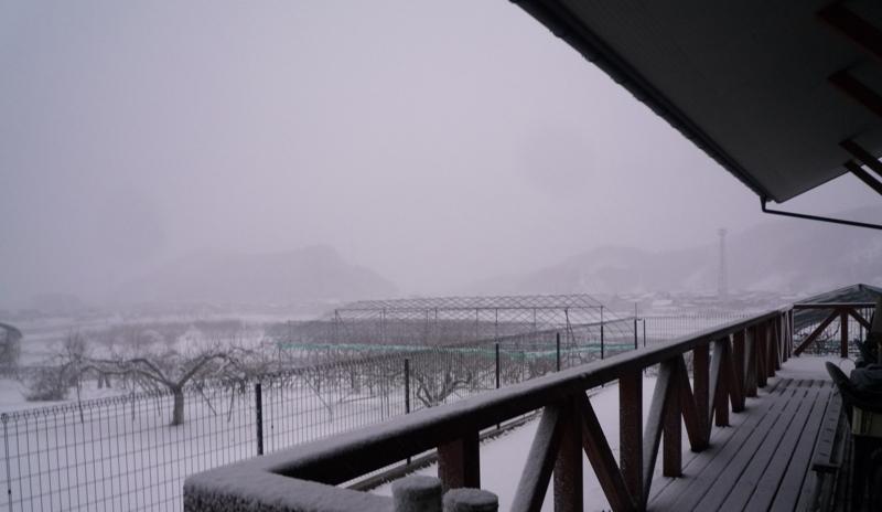 粉雪の吹雪!