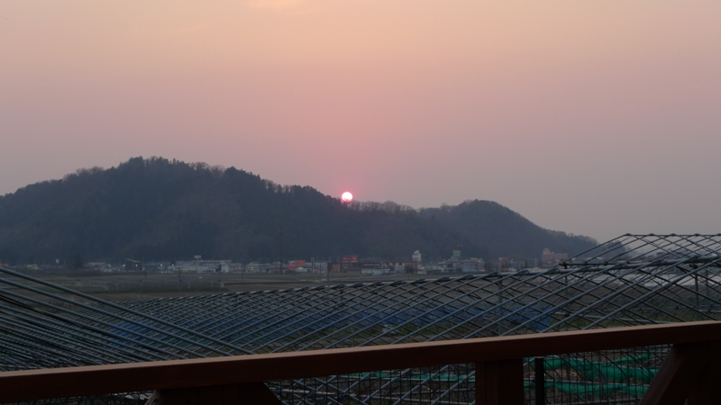 夕日が綺麗ヨ☆