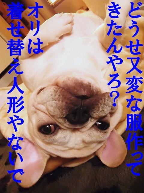 関西弁ゾロ