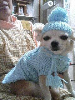 帽子まで…(-_-;)編んだの…